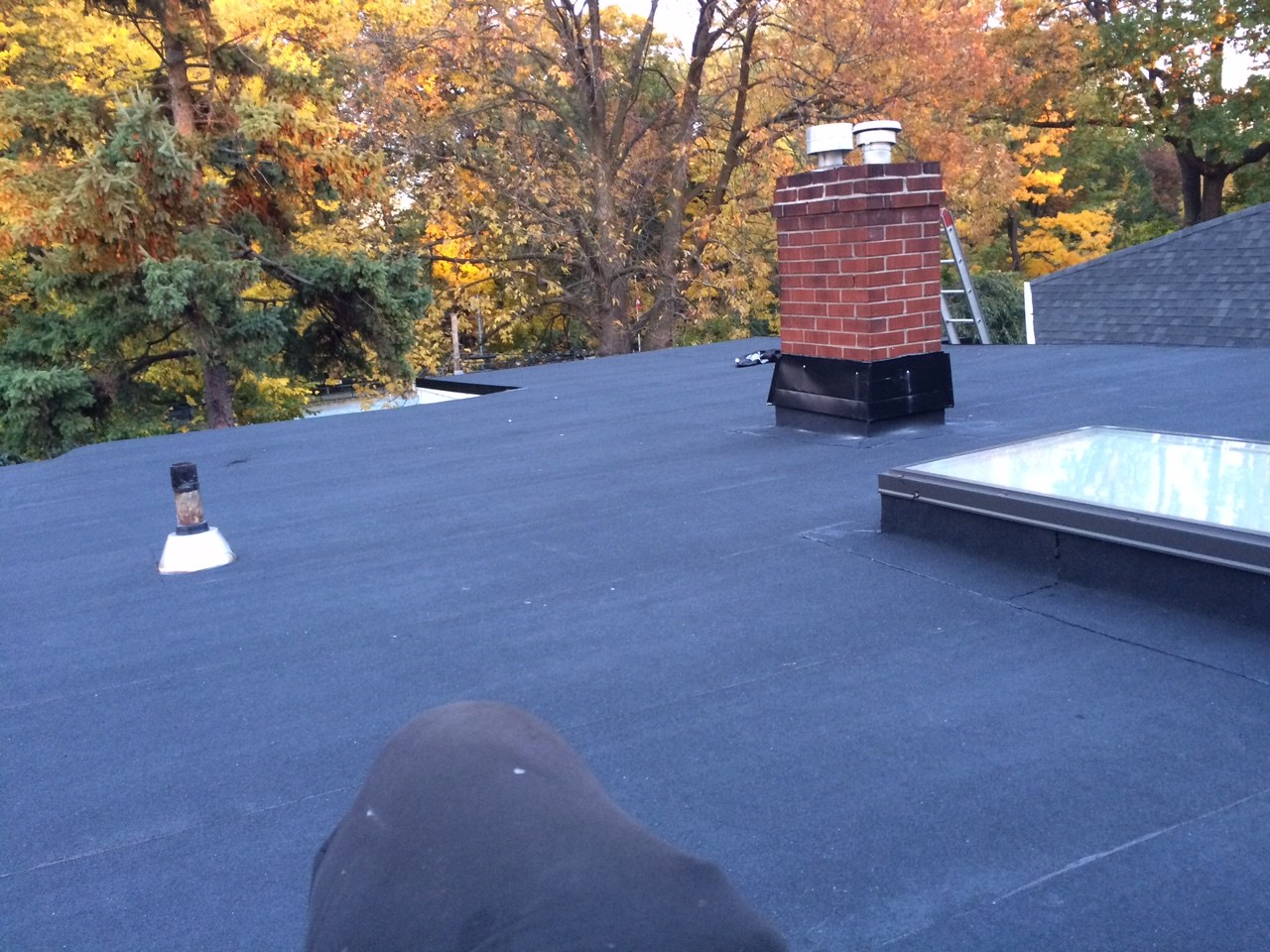 Flat Roofing Options Toronto
