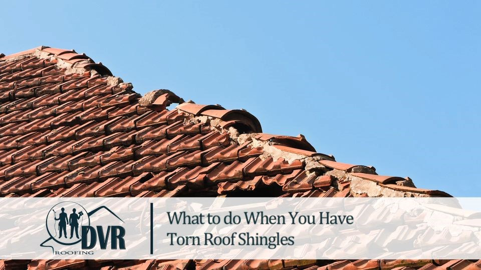 What to Do When You Have Torn Roof Shingles tornroofshingles